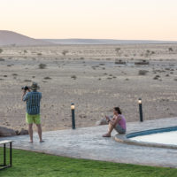 Namibia Safari-3249